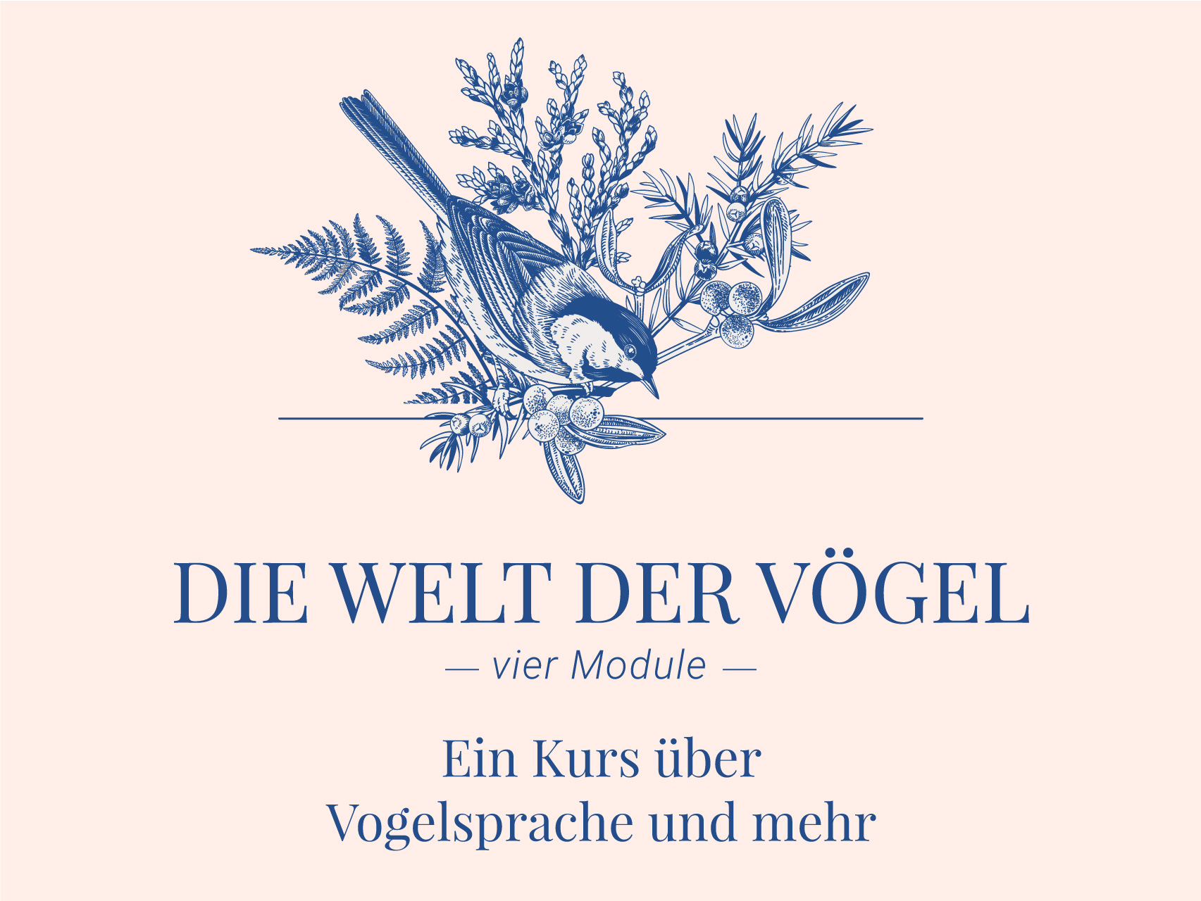Naturverbindung Berlin Vogelkunde Vogelsprache Wildnispädagokgik